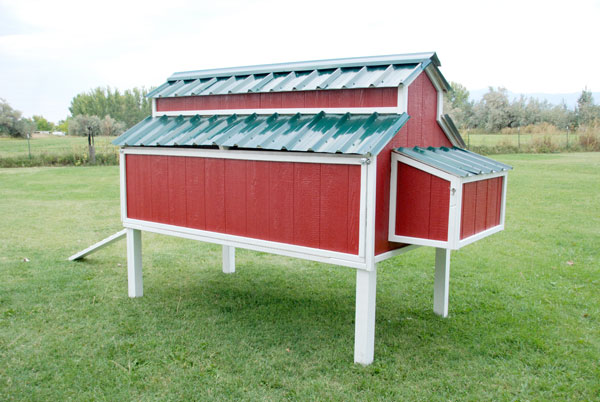 chicken-coop-roof